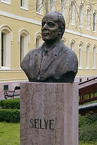 Ганс Селье
