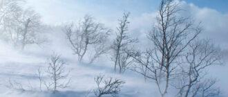 Снежный плен